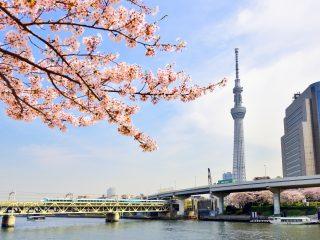 東京のクレジットカード現金化業者をまとめて紹介